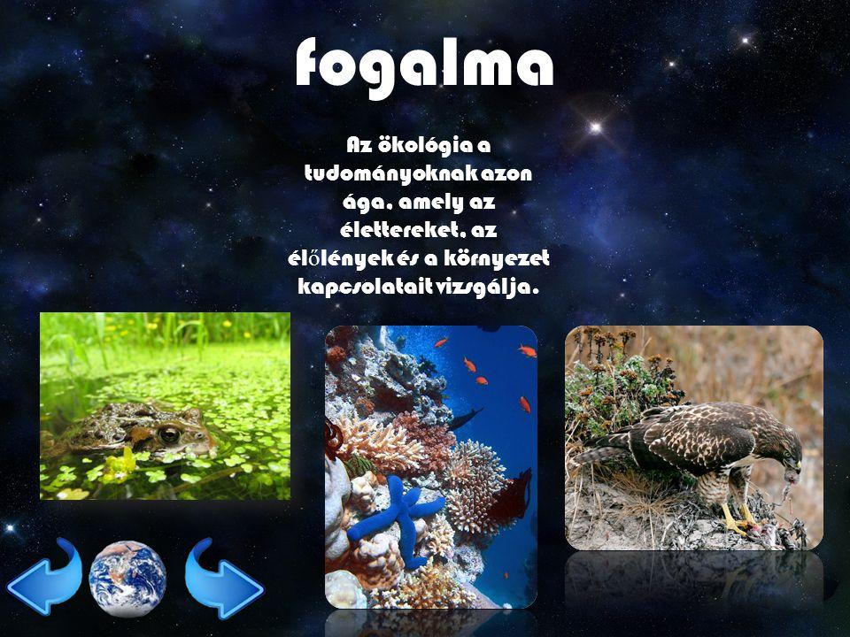 fogalma Az ökológia a tudományoknak azon ága, amely az élettereket, az élőlények és a környezet kapcsolatait vizsgálja.