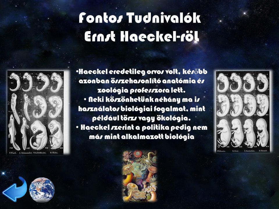 Haeckel szerint a politika pedig nem más mint alkalmazott biológia