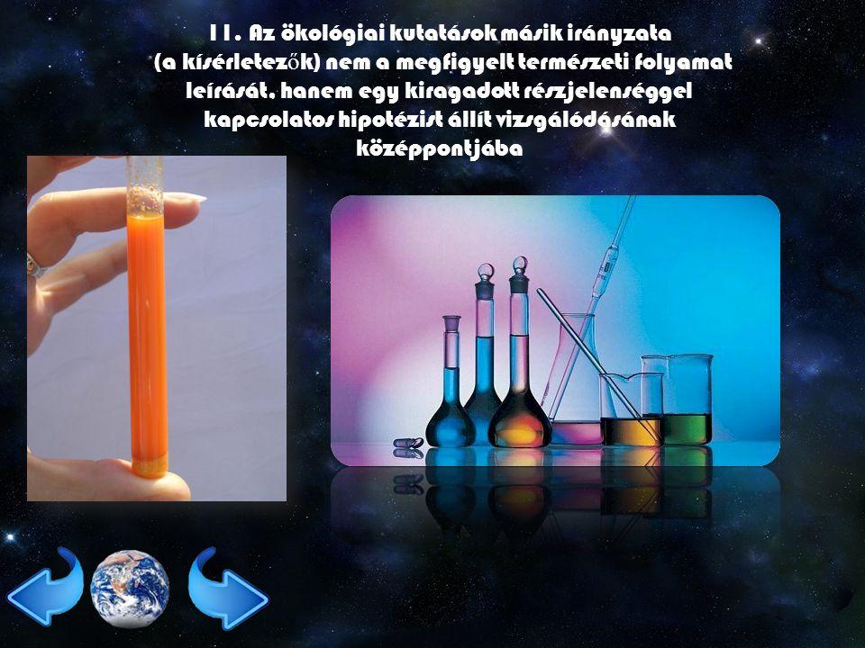 11. Az ökológiai kutatások másik irányzata