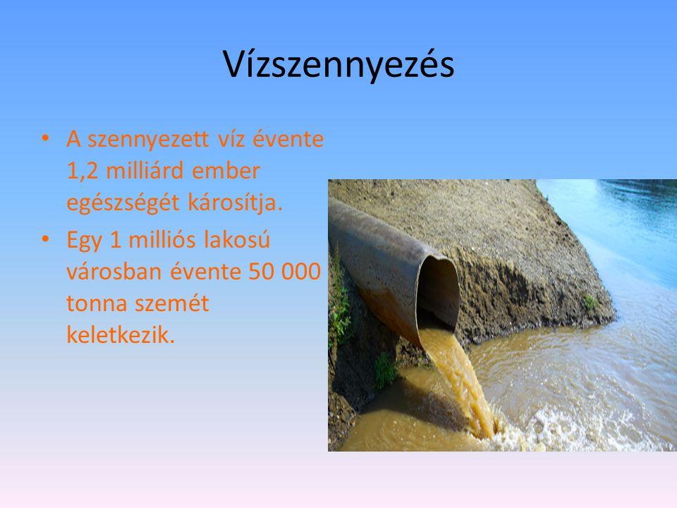 Vízszennyezés A szennyezett víz évente 1,2 milliárd ember egészségét károsítja.