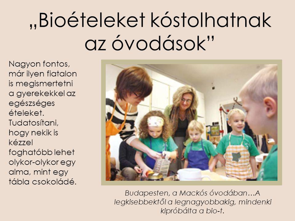 """""""Bioételeket kóstolhatnak az óvodások"""