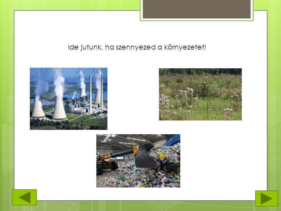 Ide jutunk, ha szennyezed a környezetet!