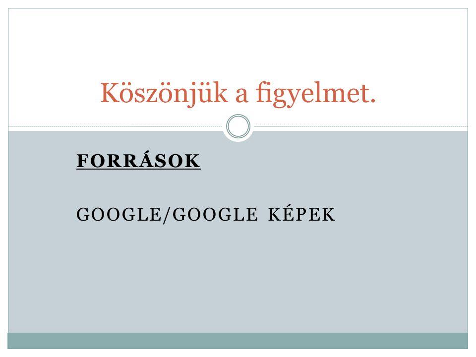 FORRÁSOK Google/google képek