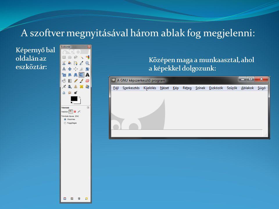 A szoftver megnyitásával három ablak fog megjelenni:
