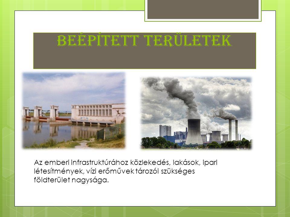 Beépített területek Az emberi infrastruktúrához közlekedés, lakások, ipari létesítmények, vízi erőművek tározói szükséges földterület nagysága.