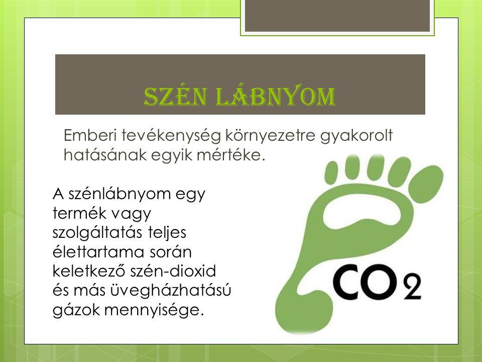 Szén lábnyom Emberi tevékenység környezetre gyakorolt hatásának egyik mértéke.