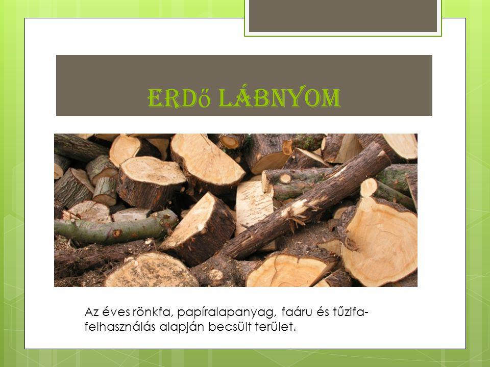 Erdő lábnyom Az éves rönkfa, papíralapanyag, faáru és tűzifa-felhasználás alapján becsült terület.