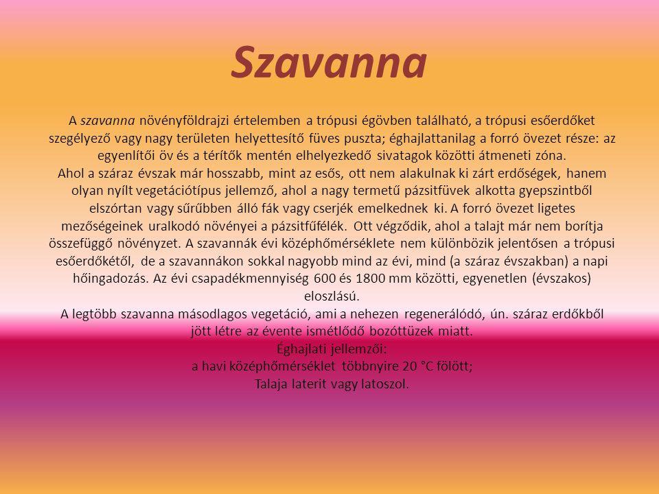 Szavanna
