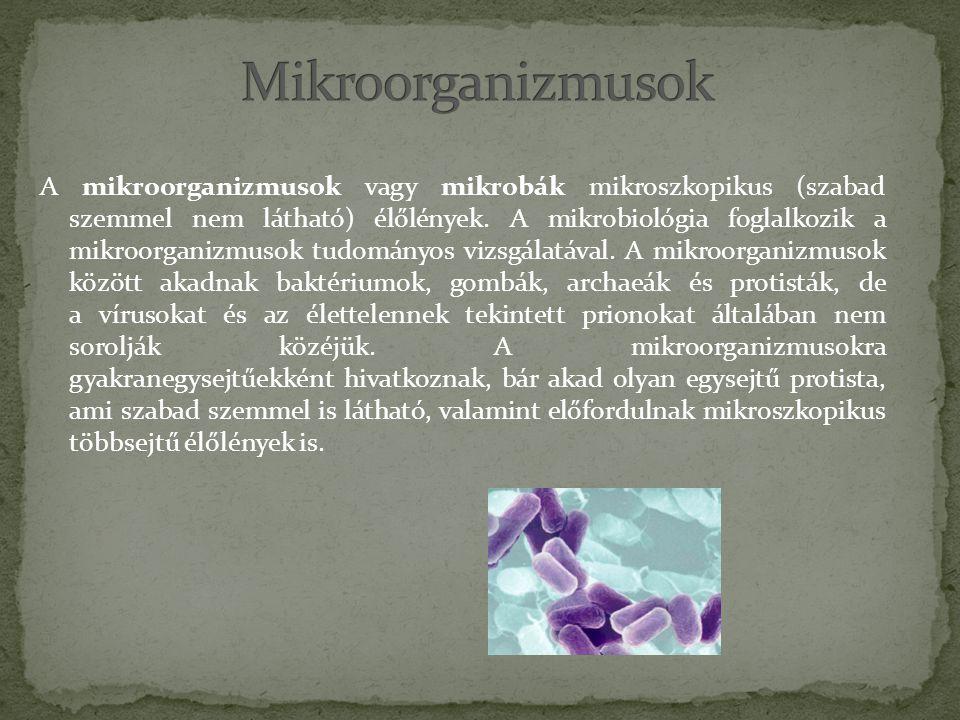 Mikroorganizmusok