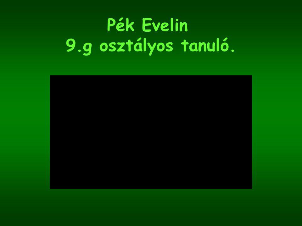 Pék Evelin 9.g osztályos tanuló.