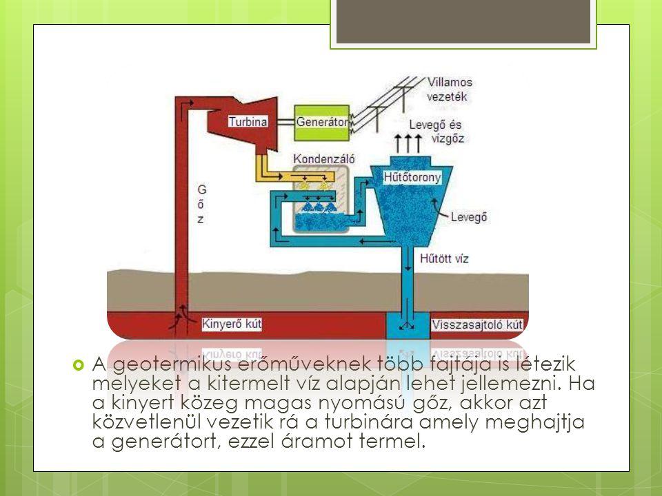 A geotermikus erőműveknek több fajtája is létezik melyeket a kitermelt víz alapján lehet jellemezni.