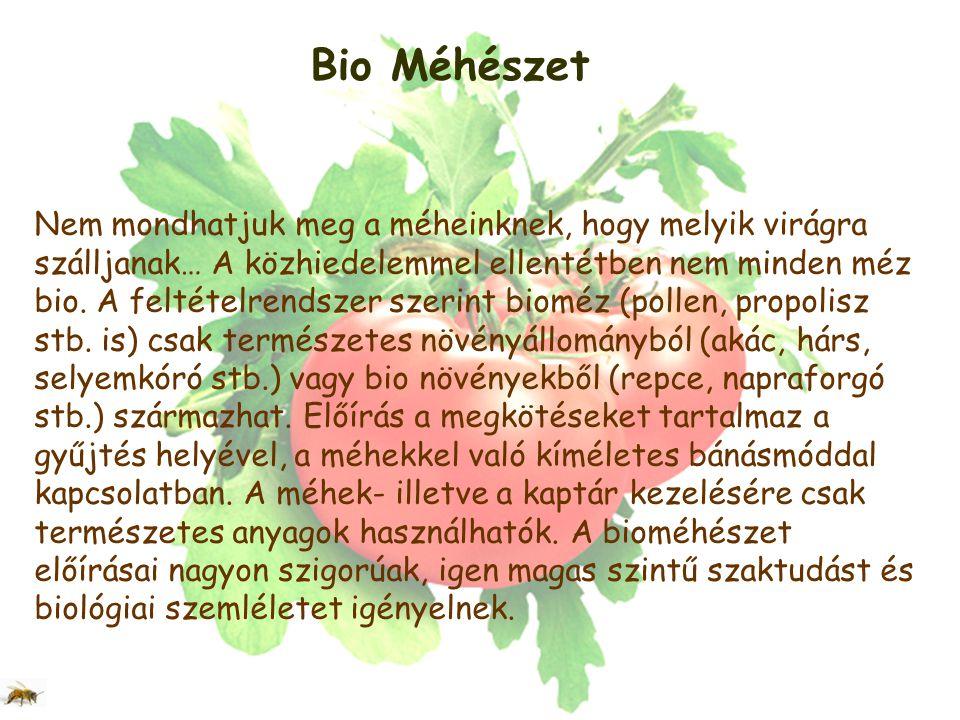 Bio Méhészet