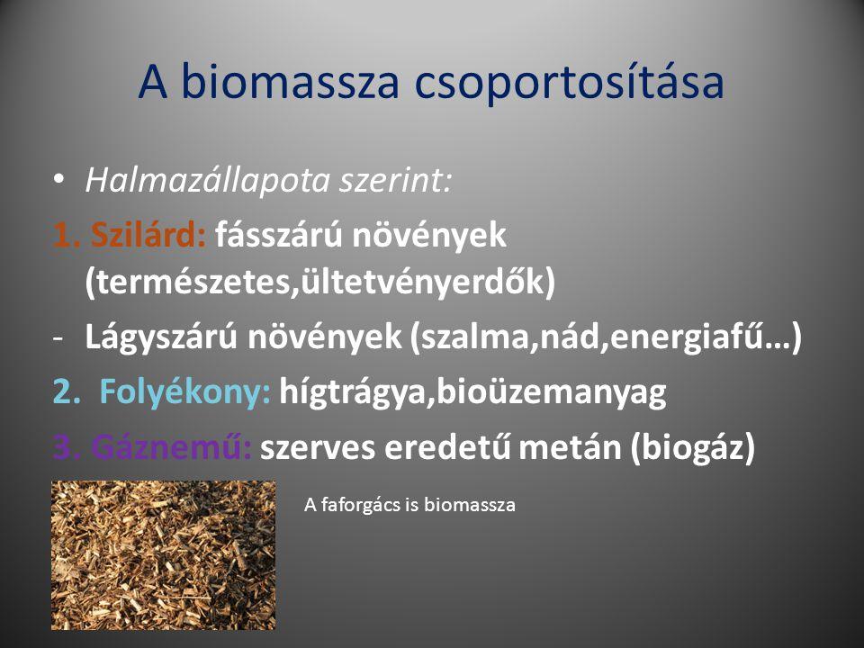 A biomassza csoportosítása