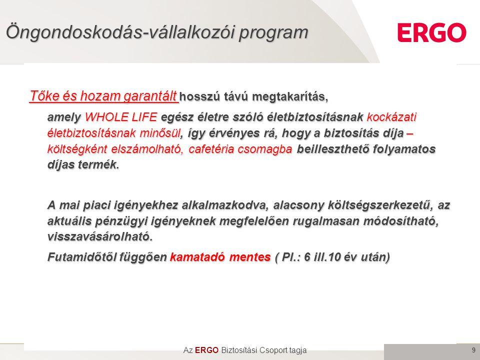 Öngondoskodás-vállalkozói program