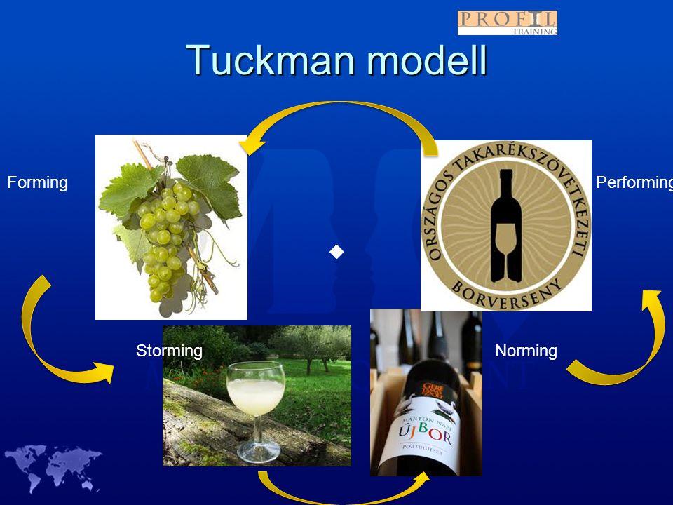 Tuckman modell Forming Performing  Storming Norming