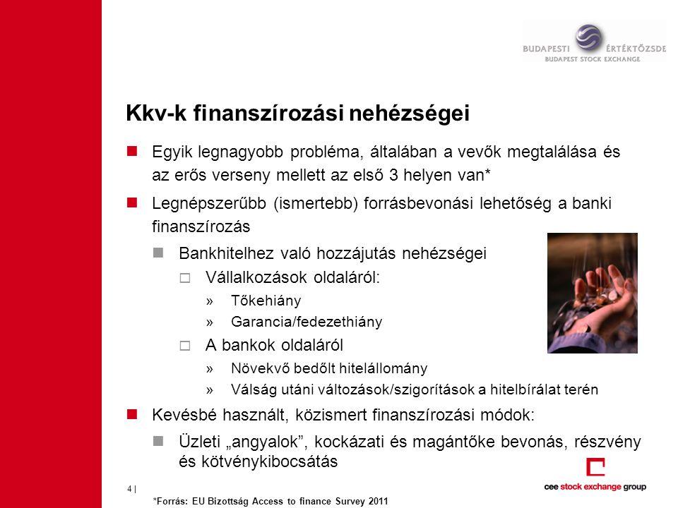 Kkv-k finanszírozási nehézségei