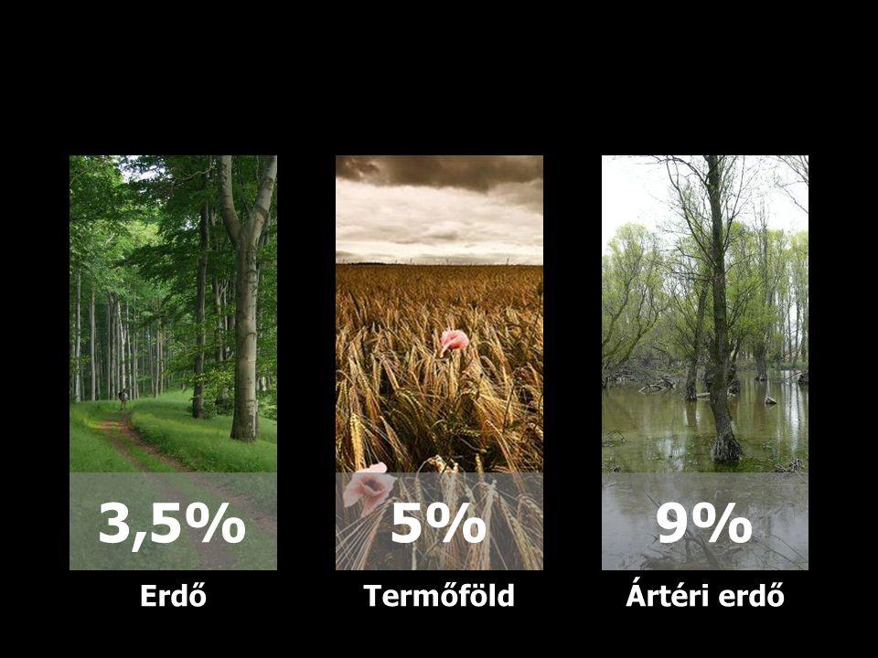 3,5% 5% 9% Erdő Termőföld Ártéri erdő 24