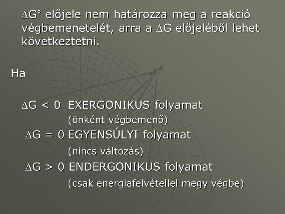 DG < 0 EXERGONIKUS folyamat DG = 0 EGYENSÚLYI folyamat