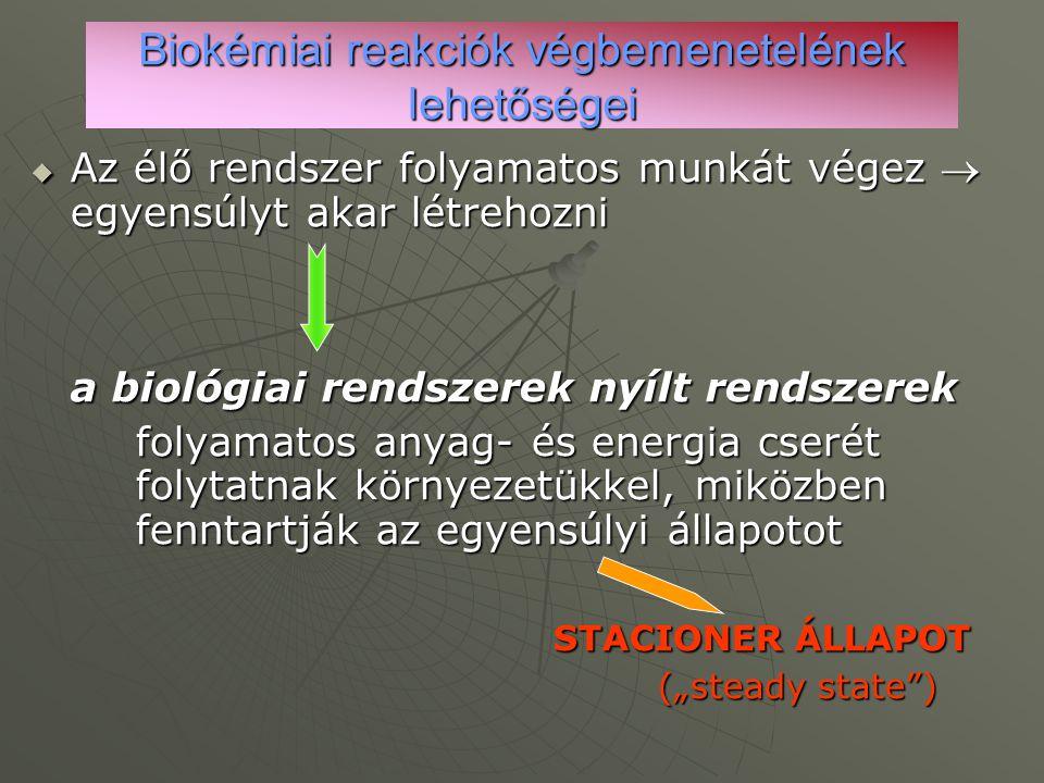 Biokémiai reakciók végbemenetelének lehetőségei