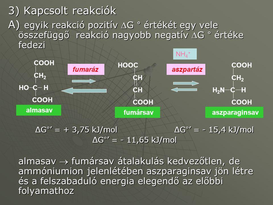 3) Kapcsolt reakciók A) egyik reakció pozitív G ° értékét egy vele összefüggő reakció nagyobb negatív G ° értéke fedezi.