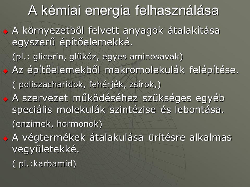 A kémiai energia felhasználása
