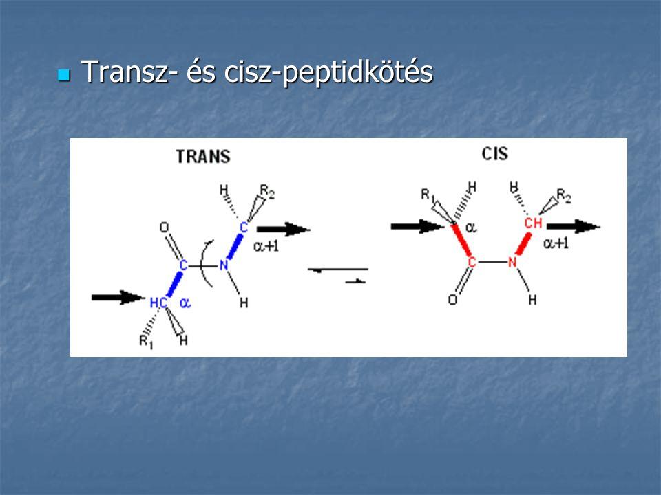 Transz- és cisz-peptidkötés