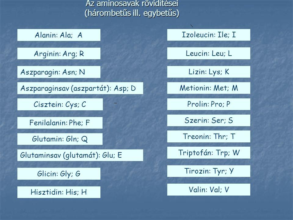 Az aminosavak rövidítései (hárombetűs ill. egybetűs)