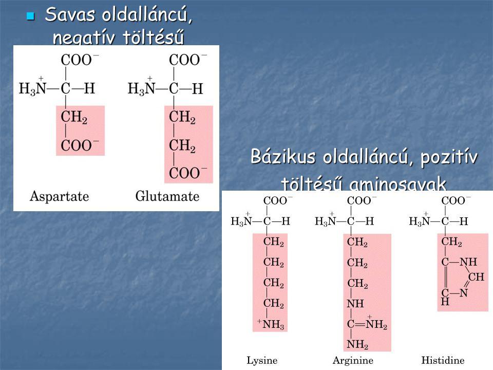 Savas oldalláncú, negatív töltésű aminosavak
