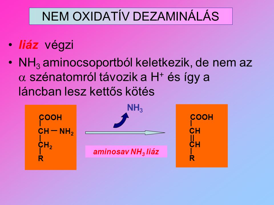 NEM OXIDATÍV DEZAMINÁLÁS
