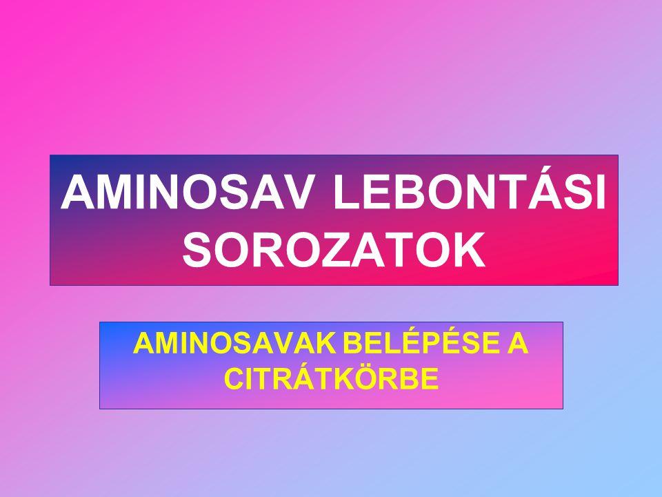AMINOSAV LEBONTÁSI SOROZATOK