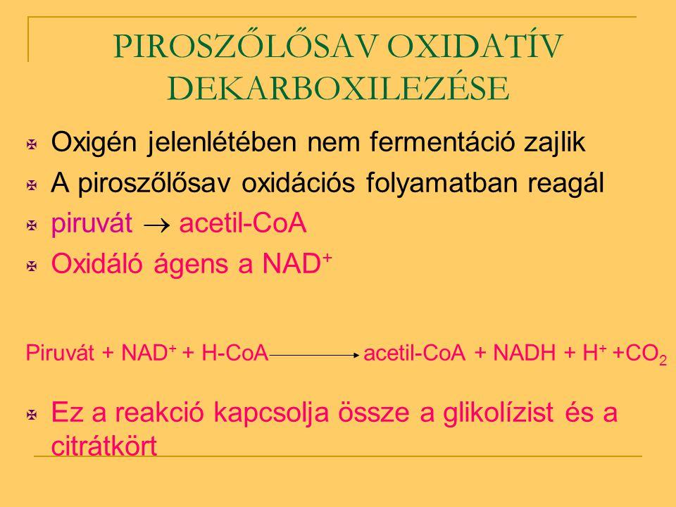 PIROSZŐLŐSAV OXIDATÍV DEKARBOXILEZÉSE