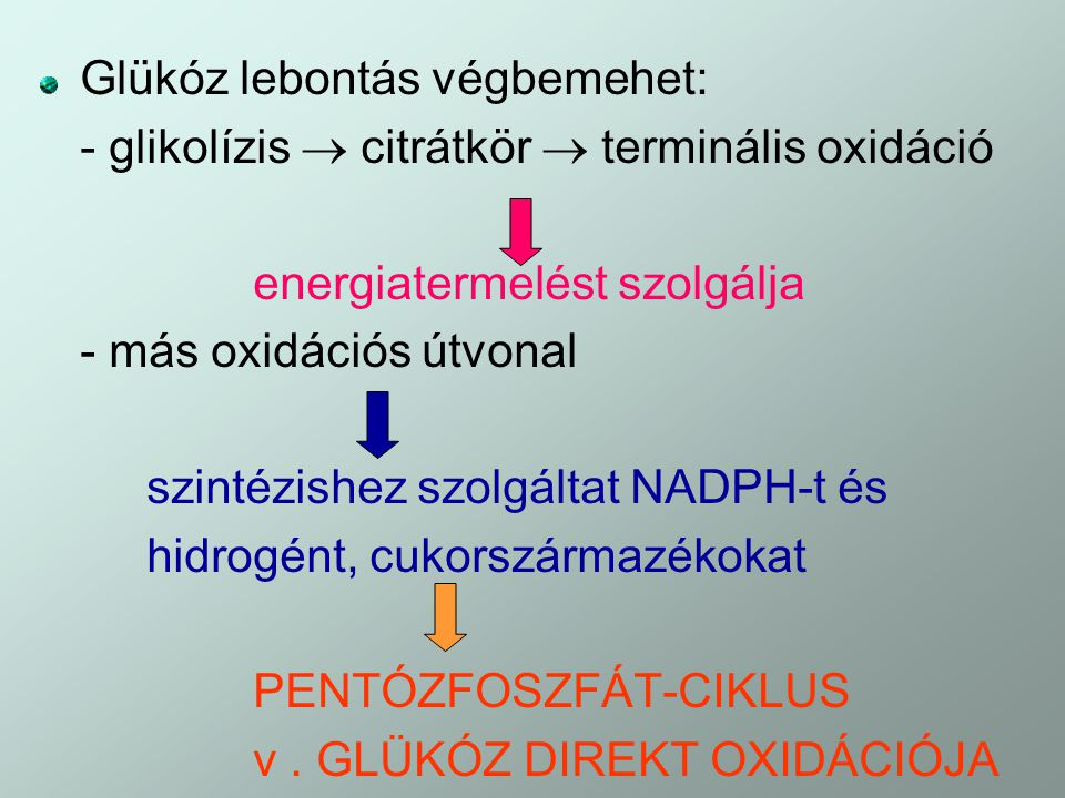 Glükóz lebontás végbemehet: