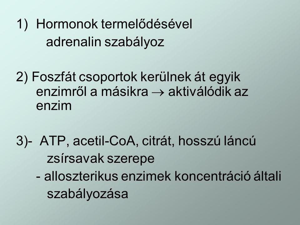 Hormonok termelődésével