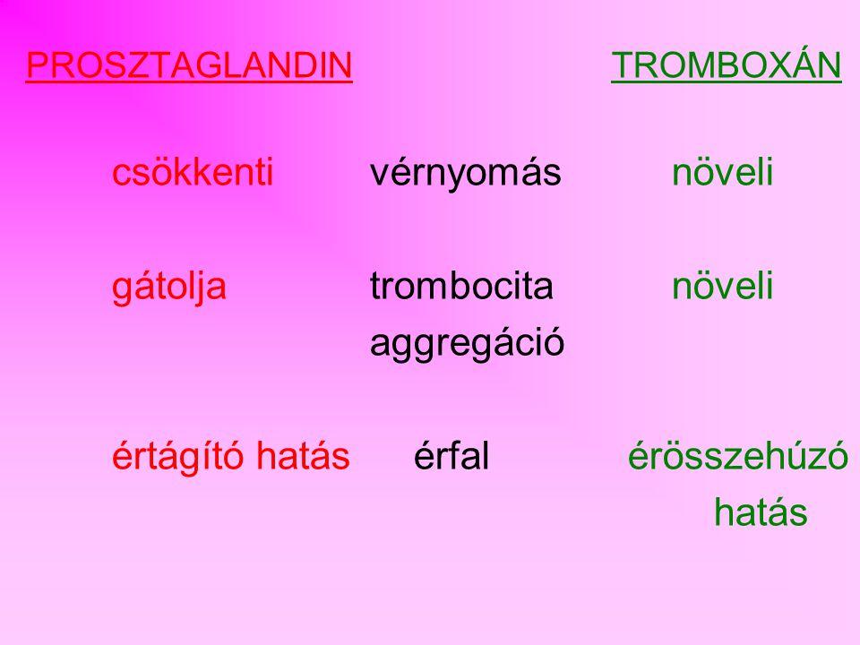gátolja trombocita növeli aggregáció értágító hatás érfal érösszehúzó