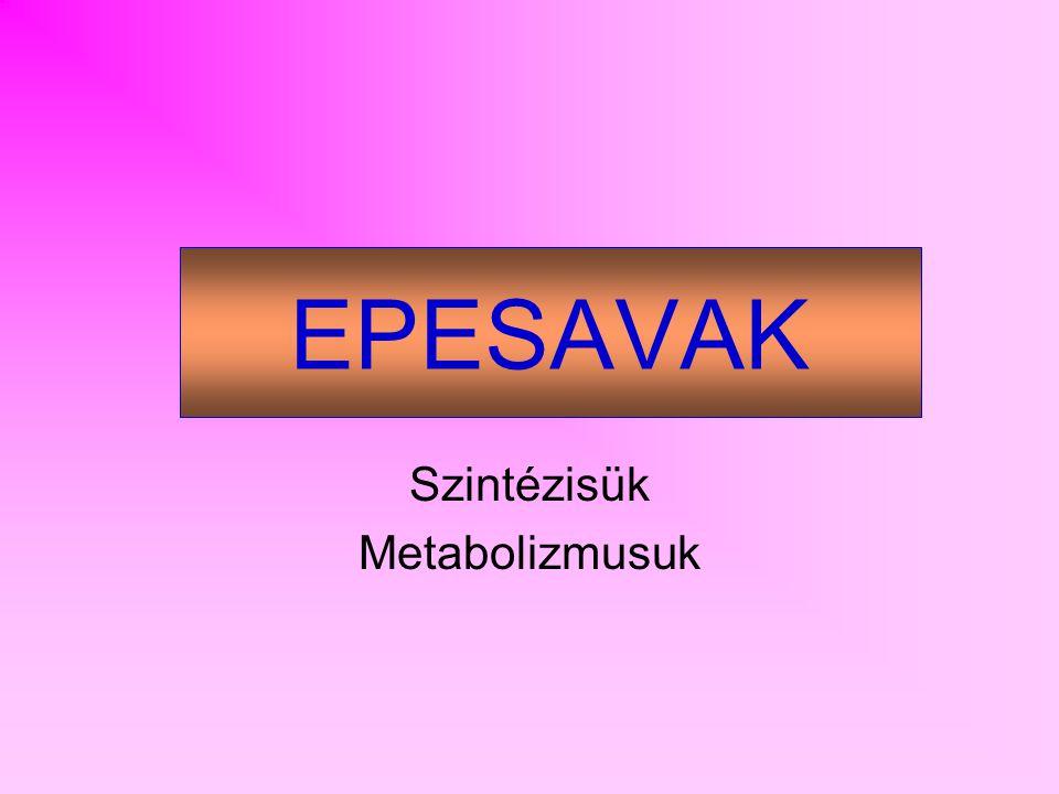 Szintézisük Metabolizmusuk