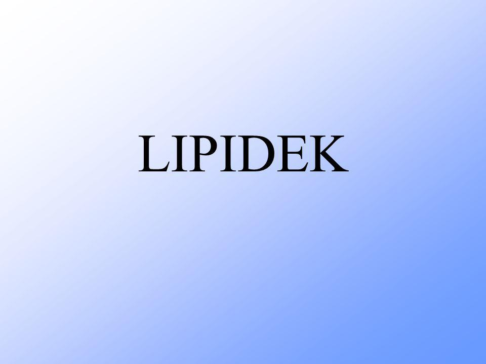 LIPIDEK