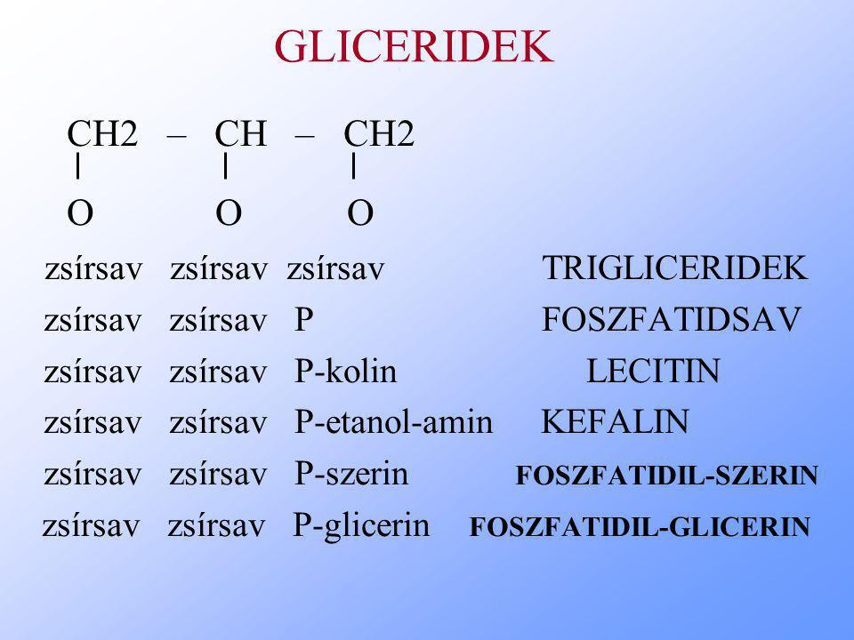 GLICERIDEK CH2 – CH – CH2 O O O zsírsav zsírsav zsírsav TRIGLICERIDEK