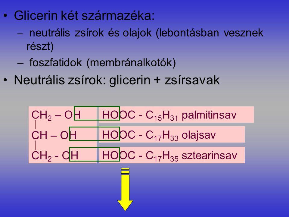 Glicerin két származéka: