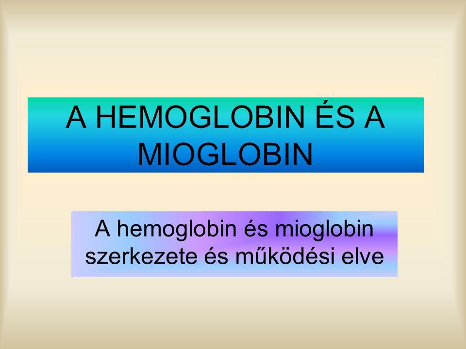 A HEMOGLOBIN ÉS A MIOGLOBIN