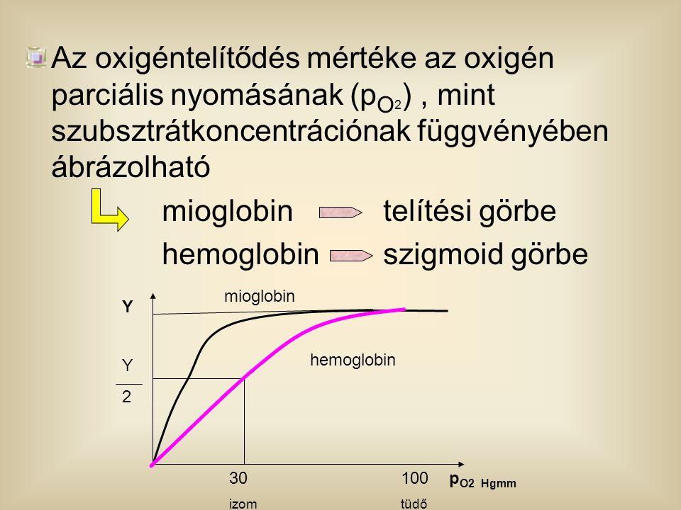 mioglobin telítési görbe hemoglobin szigmoid görbe