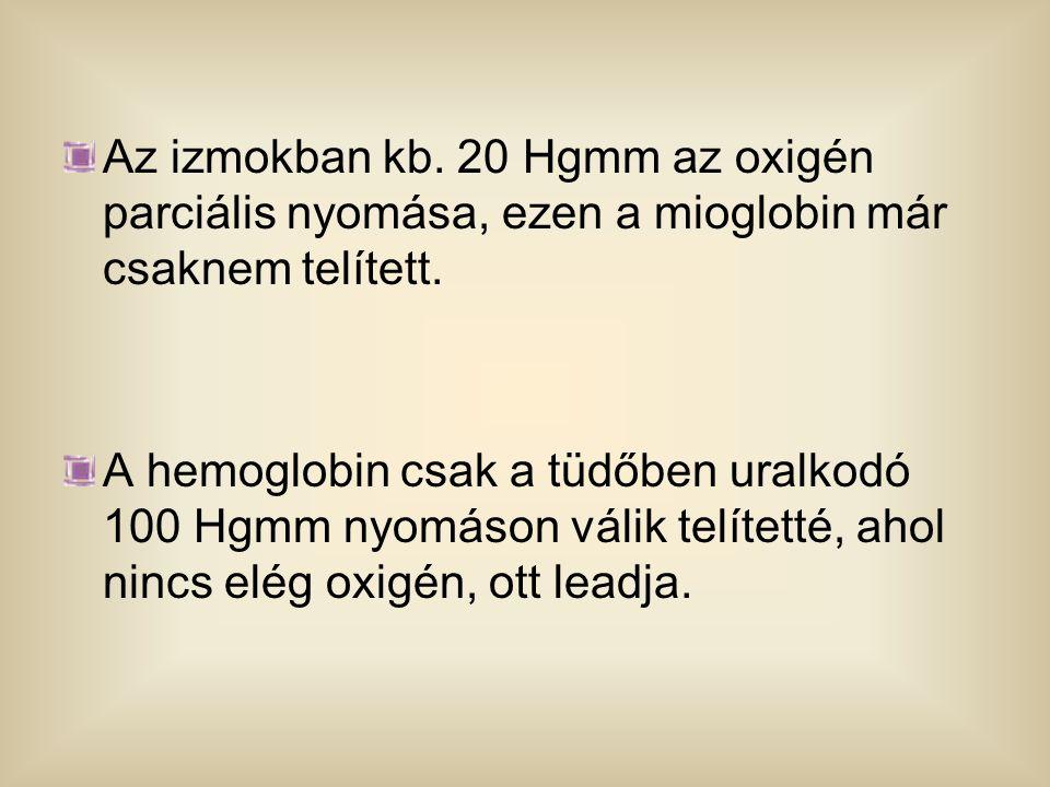 Az izmokban kb. 20 Hgmm az oxigén parciális nyomása, ezen a mioglobin már csaknem telített.