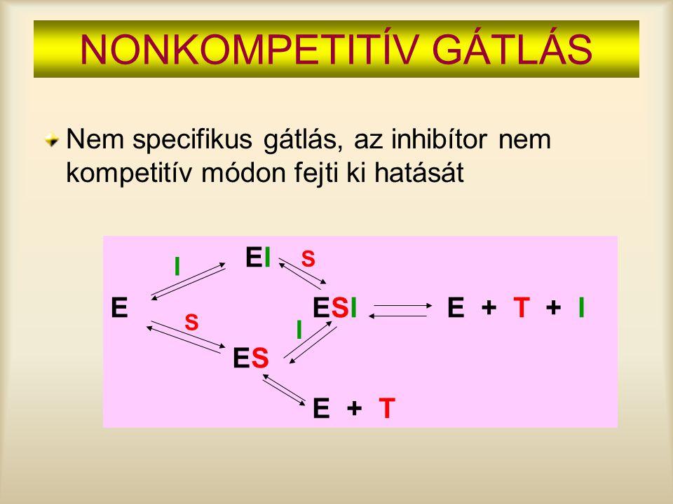 NONKOMPETITÍV GÁTLÁS Nem specifikus gátlás, az inhibítor nem kompetitív módon fejti ki hatását. EI.