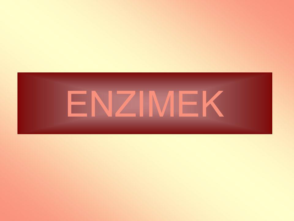 ENZIMEK