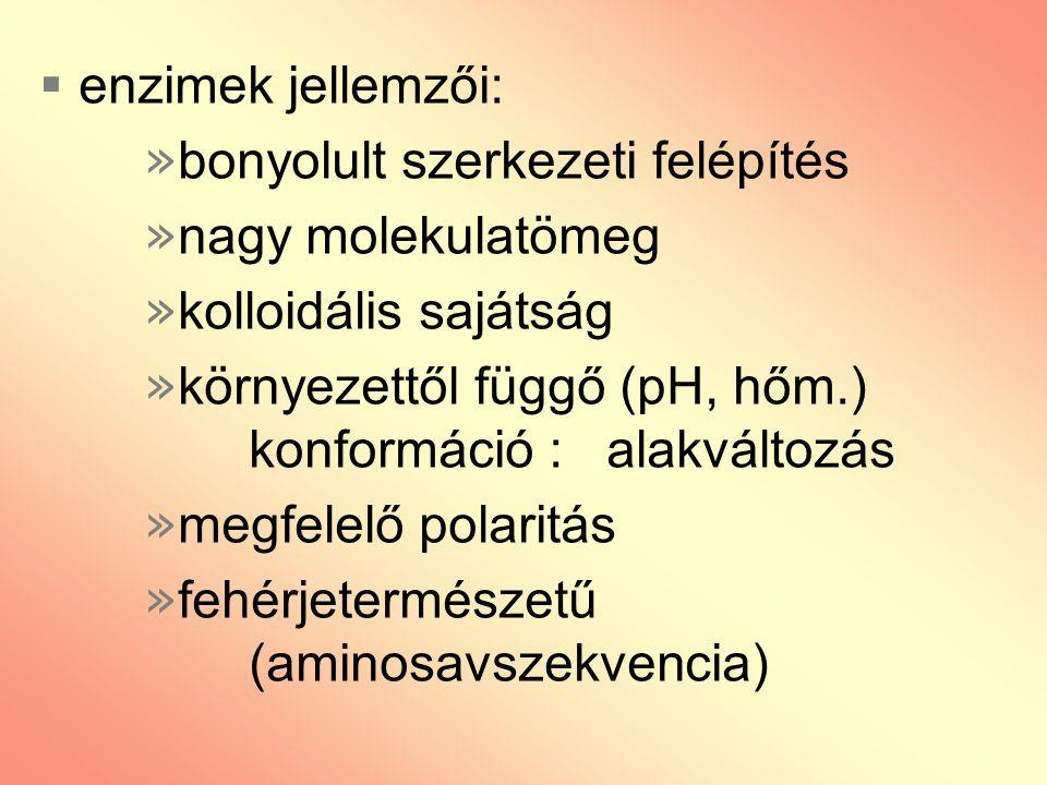 enzimek jellemzői: bonyolult szerkezeti felépítés. nagy molekulatömeg. kolloidális sajátság.