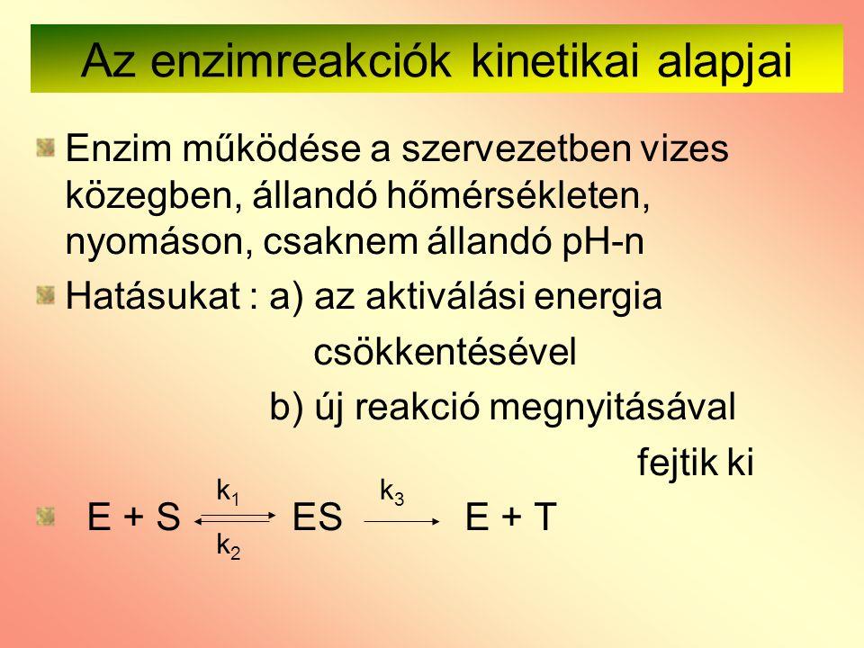 Az enzimreakciók kinetikai alapjai