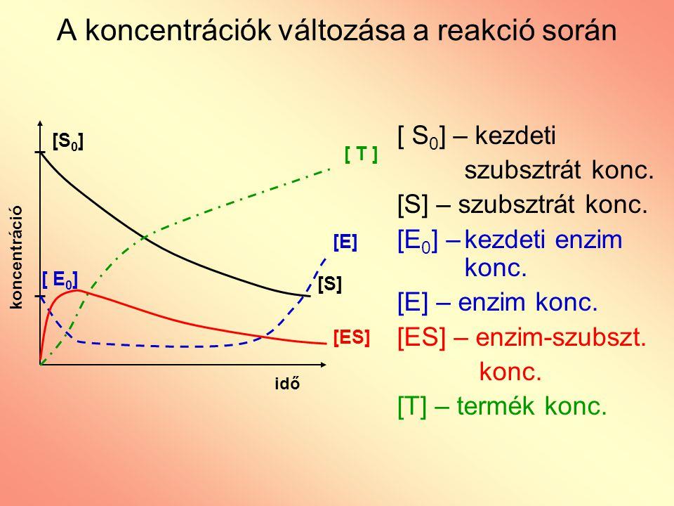 A koncentrációk változása a reakció során