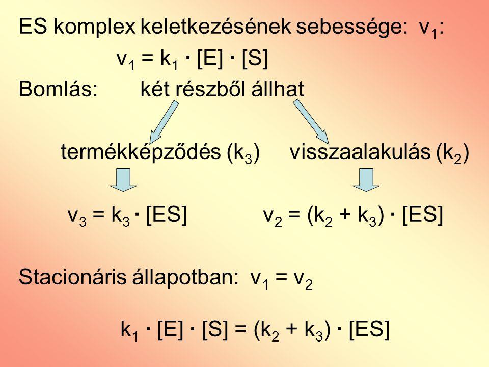 ES komplex keletkezésének sebessége: v1: