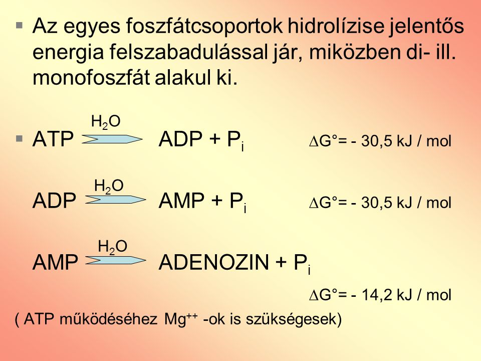 ATP ADP + Pi G°= - 30,5 kJ / mol ADP AMP + Pi G°= - 30,5 kJ / mol