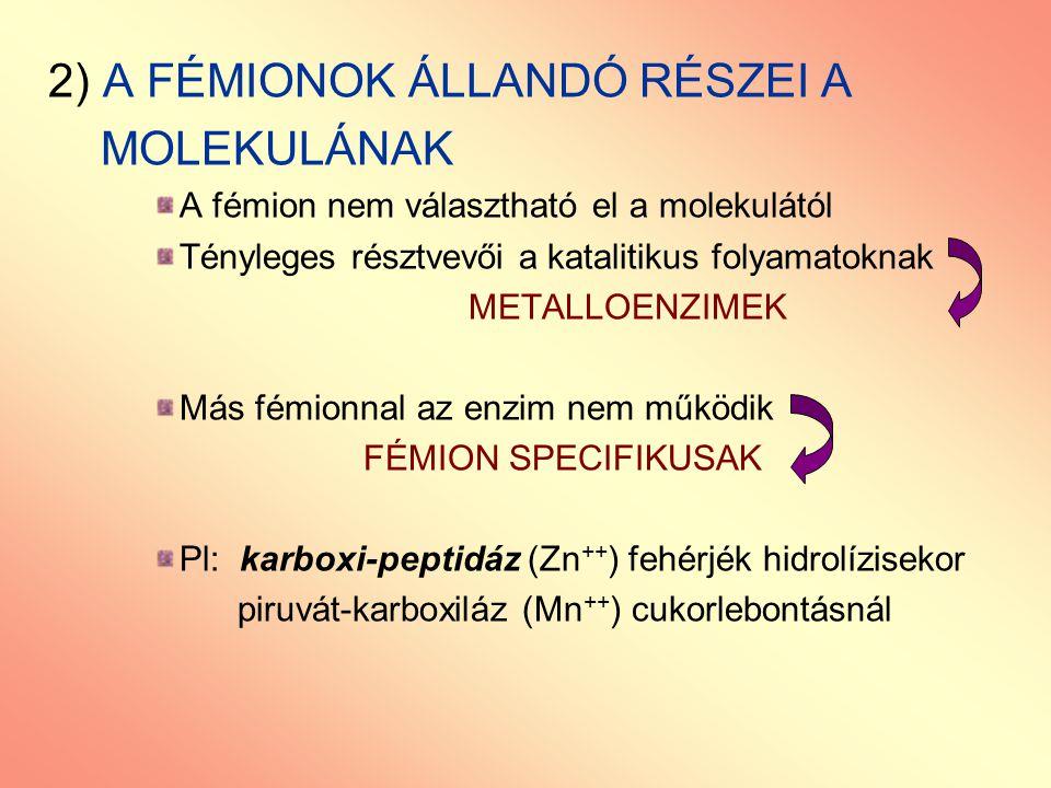 2) A FÉMIONOK ÁLLANDÓ RÉSZEI A MOLEKULÁNAK