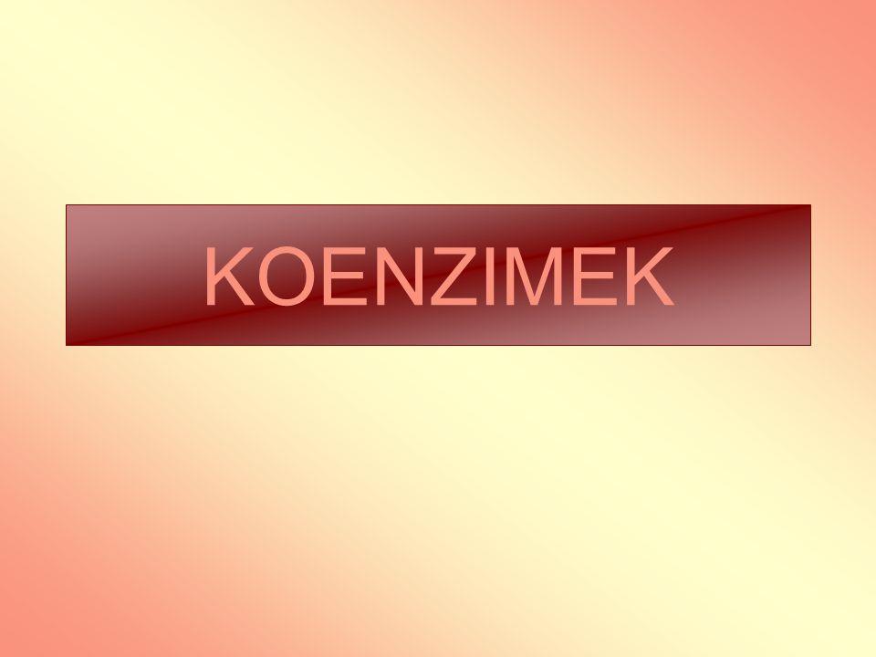 KOENZIMEK